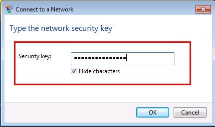 Wireless network security key